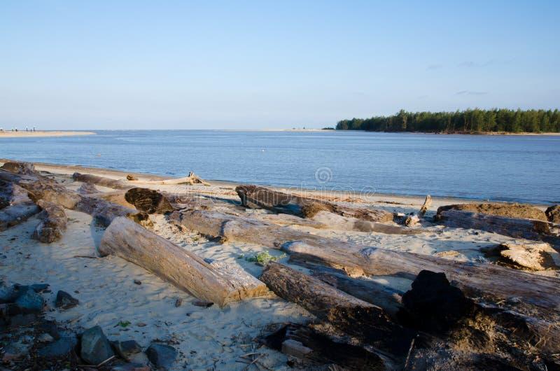Libri macchina via lavati dalla spiaggia fotografia stock