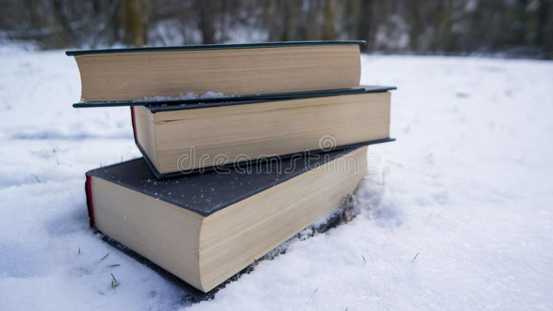 Libri in neve fotografia stock