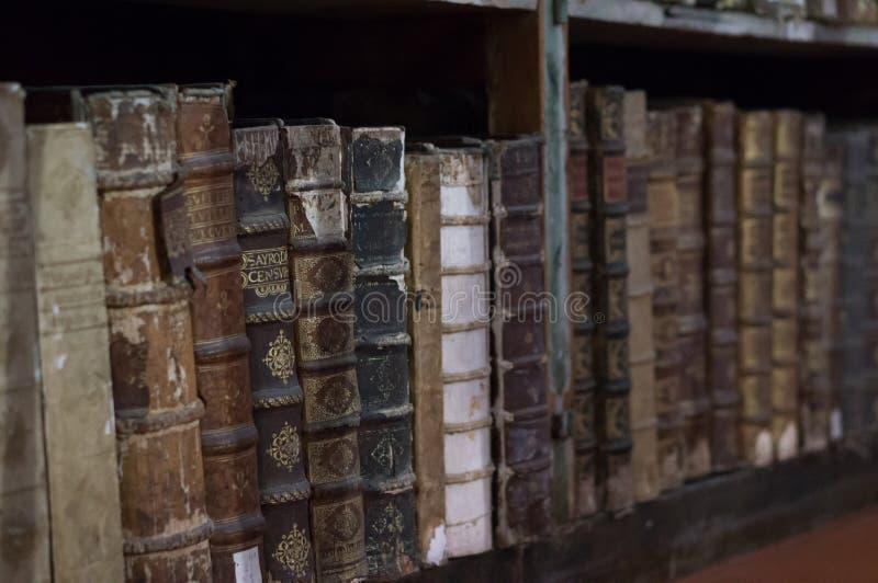 Libri storici a partire dallo XVI secolo in Joanina Library fotografie stock libere da diritti