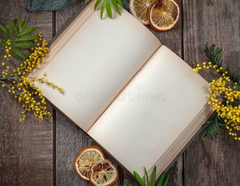Libro abierto con las páginas en blanco en la tabla de madera vieja en el diseño de la primavera Marco horizontal fotografía de archivo