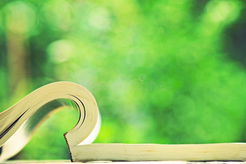 Libro abierto en la tabla de madera en el color de tono del vintage, concepto de la sabiduría, espacio de la copia imagen de archivo libre de regalías