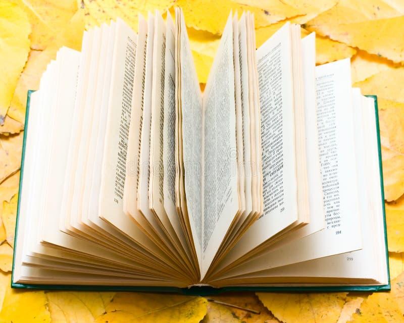 Libro abierto viejo con la flor fotografía de archivo