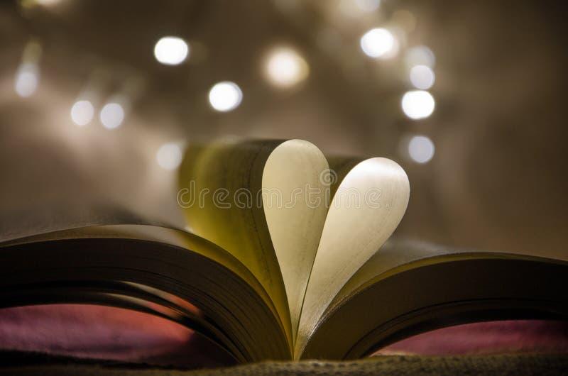 Libro amato fotografia stock
