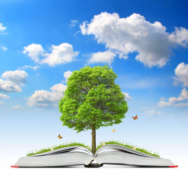 Libro aperto con l'albero e l'erba illustrazione vettoriale