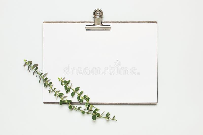 Libro Blanco en blanco con la pinza de la carpeta y del metal, ramitas del verde de la primavera de plantas en espacio puesto pla imagen de archivo