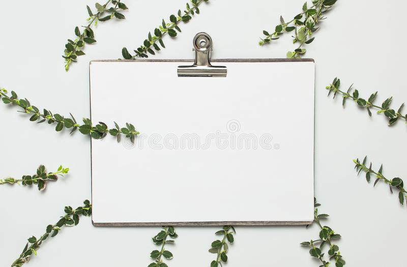 Libro Blanco en blanco con la pinza de la carpeta y del metal, ramitas del verde de la primavera de plantas en espacio puesto pla foto de archivo