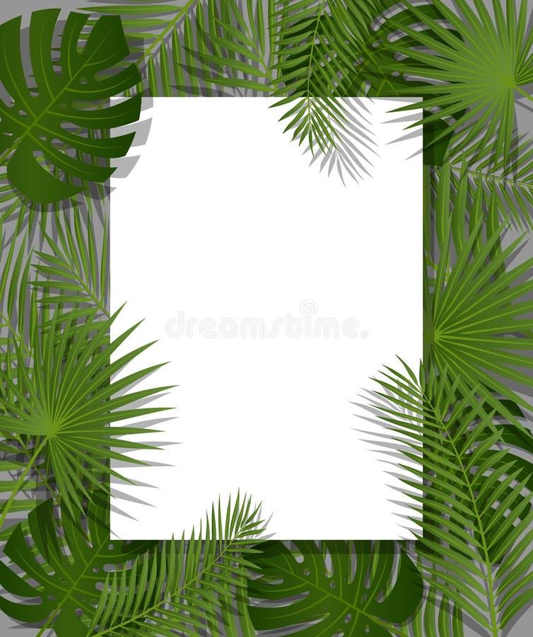 Libro Blanco en fondo tropical del verano verde con las hojas de palma y la planta exóticas Vector el diseño floral stock de ilustración