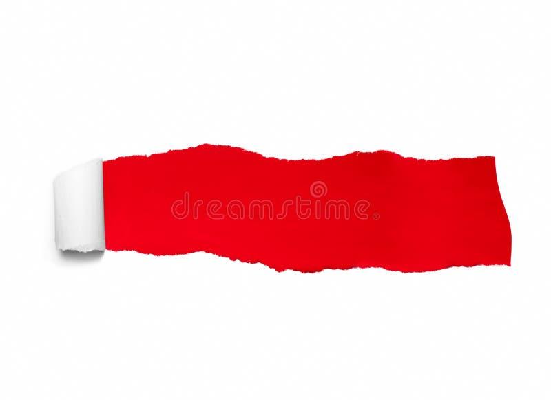 Libro Blanco rasgado sobre fondo del color rojo Concepto para el mensaje fotografía de archivo libre de regalías