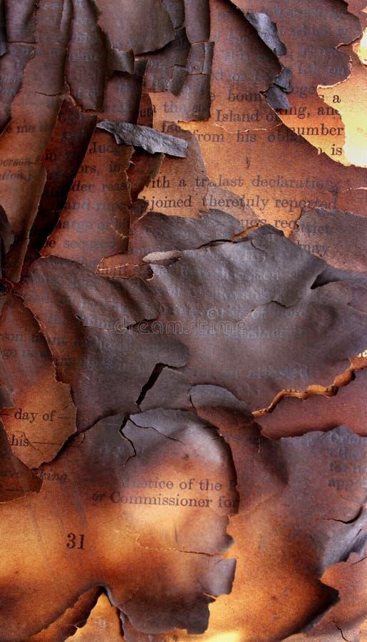 Libro bruciato fotografia stock