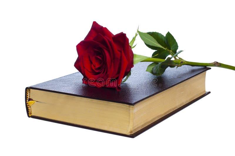 Libro con una rosa imagenes de archivo