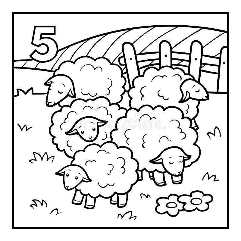 Libro da colorare, cinque pecore royalty illustrazione gratis