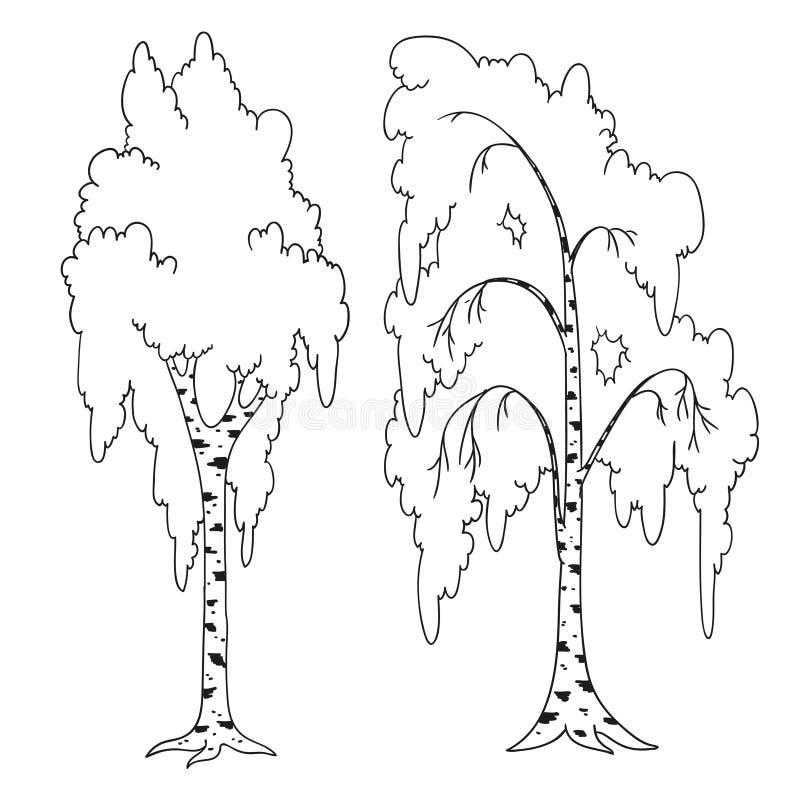 Libro da colorare degli alberi profilo della betulla for Foto di alberi da colorare