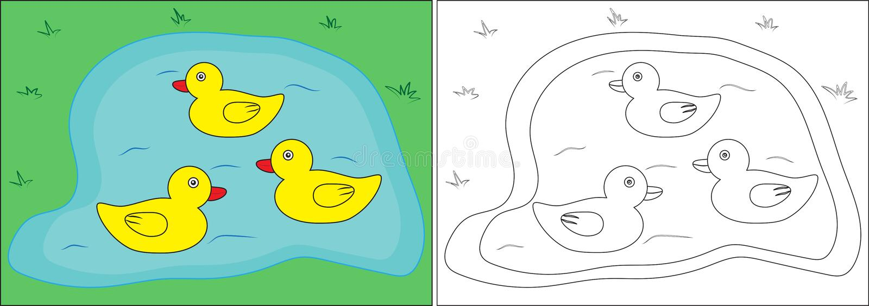 Libro da colorare per i bambini Anatre sullo stagno, fumetto Vettore illustrazione vettoriale
