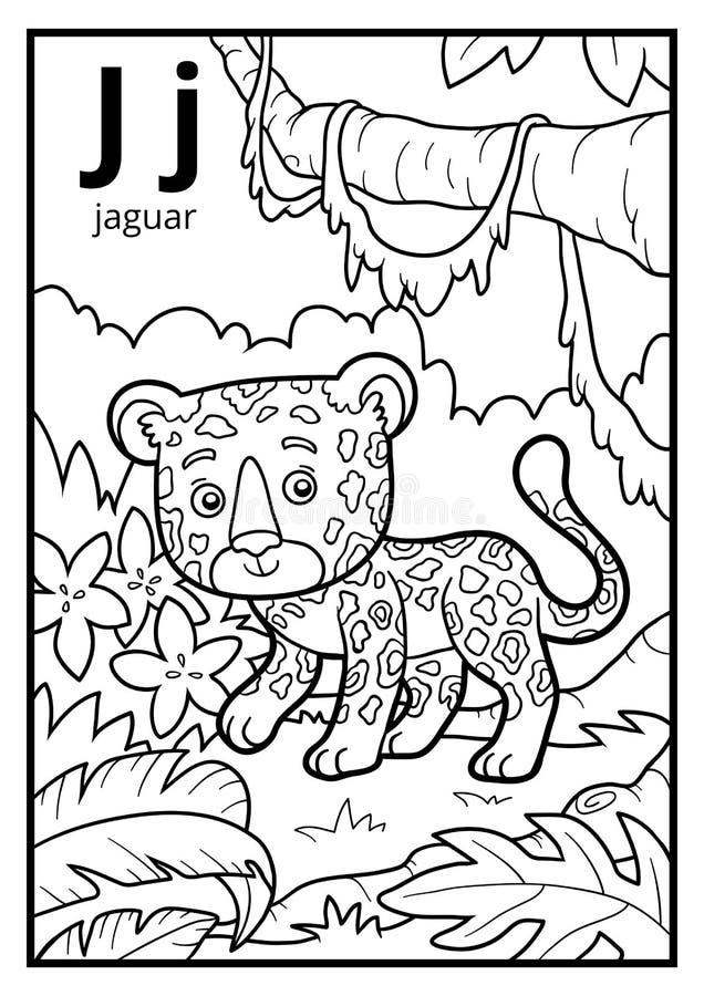 Libro De Colorear, Alfabeto Descolorido Letra J, Jaguar Ilustración ...