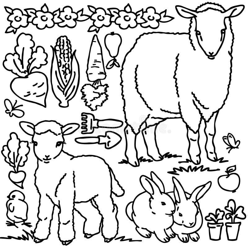 Libro De Colorear, Animales Del Campo De La Historieta Stock de ...