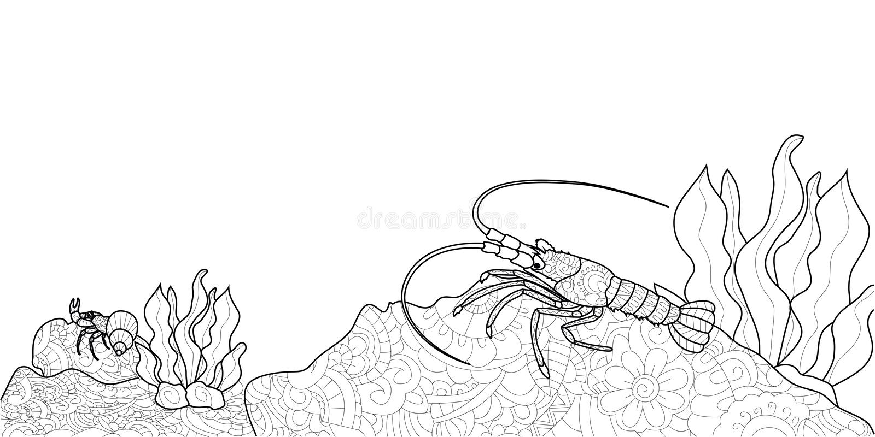 Libro De Colorear Anti De La Tensión Para Los Adultos Crustáceo En ...