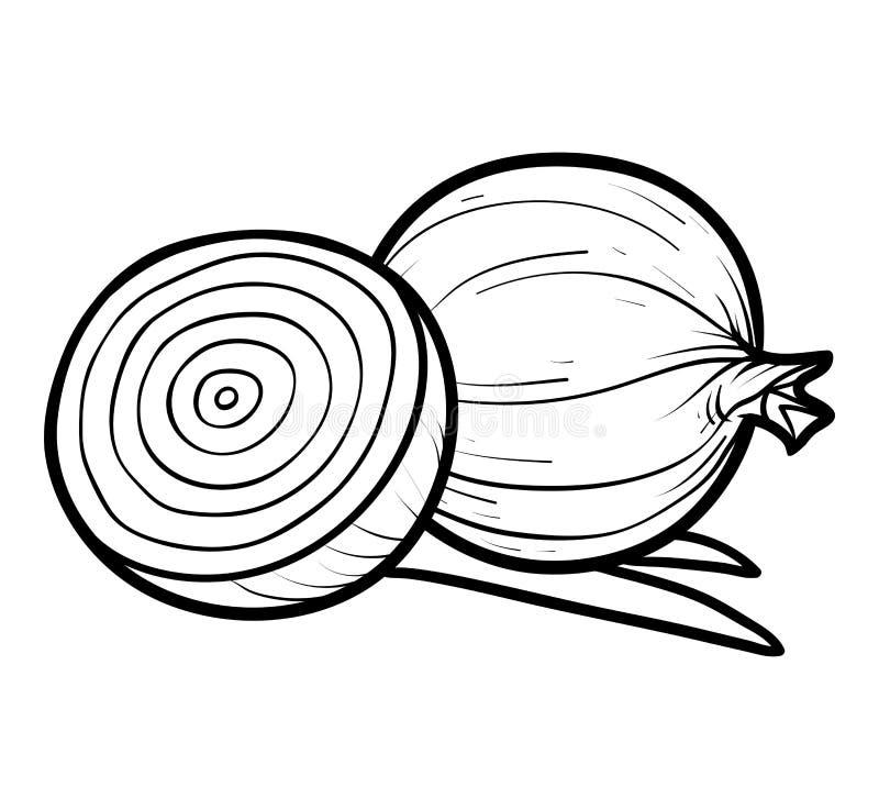 Libro De Colorear, Cebolla Roja Ilustración del Vector - Ilustración ...