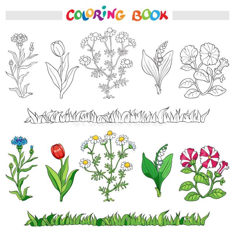 Libro de colorear con el sistema de la flor Ilustración del vector ilustración del vector