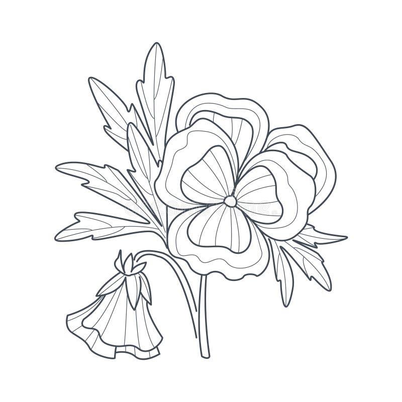 Libro de colorear de Pansy Flower Monochrome Drawing For libre illustration