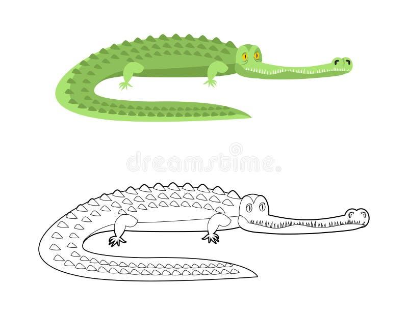 Libro de colorear del cocodrilo Buen caimán Animal salvaje Reptil verde stock de ilustración