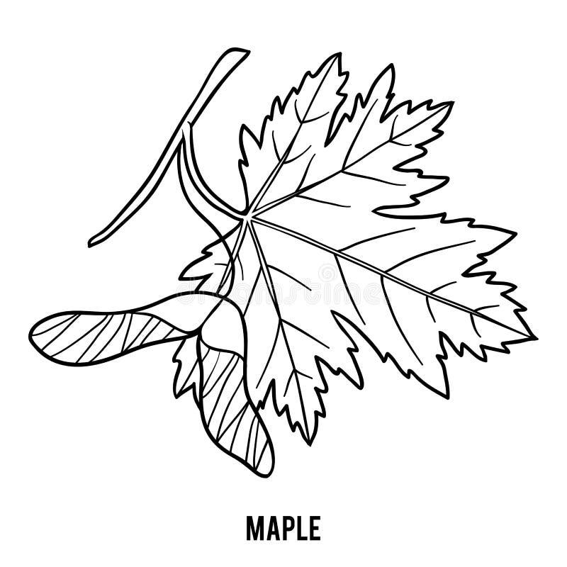 Libro de colorear, hoja de arce libre illustration