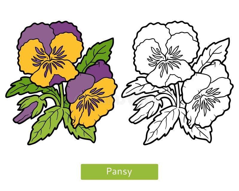 Libro de colorear, pensamiento de la flor ilustración del vector