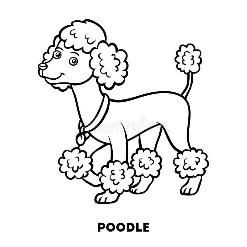 Libro de colorear, razas del perro: Caniche stock de ilustración