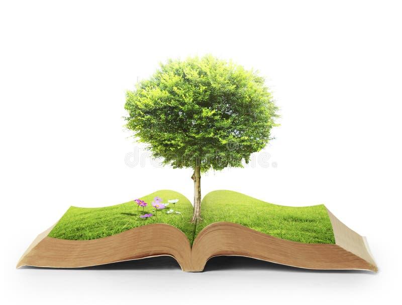 Libro de la naturaleza con la hierba y el árbol stock de ilustración
