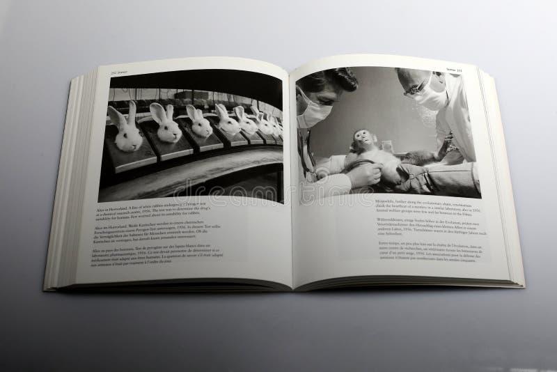Libro di fotografia di Nick Yapp, veterinari che controllano salute del ` s della scimmia immagini stock libere da diritti