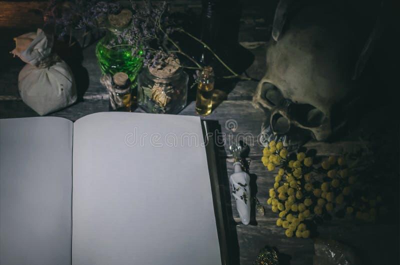 Libro di magia immagini stock
