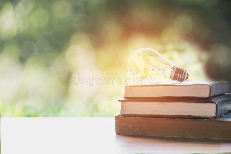 Libro e lampadina d'ardore sopra  Conoscenza e istruzione immagine stock libera da diritti