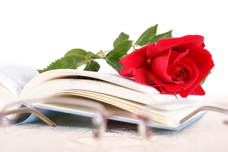 Libro e rosa rossa alle pagine del libro su fondo bianco con i glas immagine stock