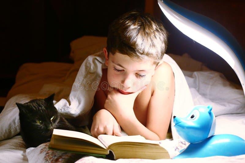 Libro leído muchacho con el gato antes de dormir fotos de archivo