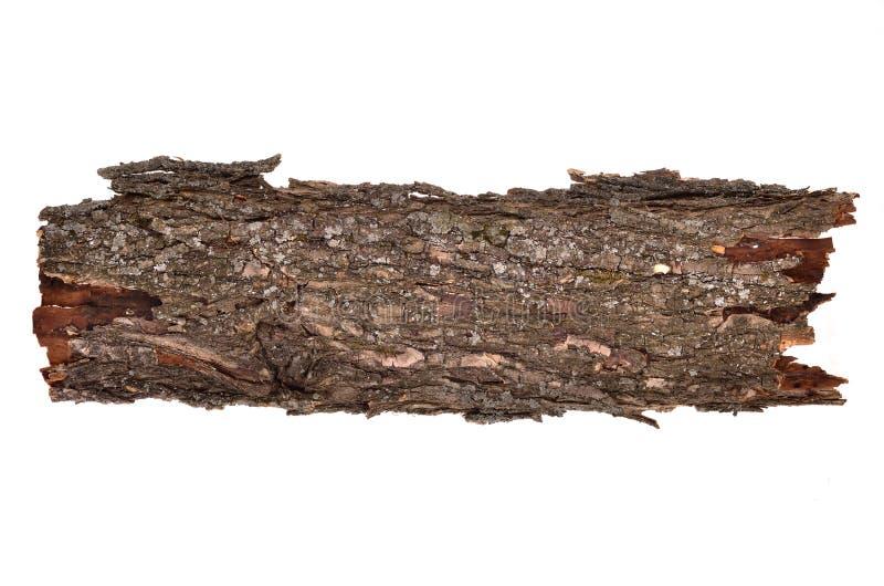 Libro macchina rotto isolato dell'albero mozzo della corteccia, struttura di legno immagine stock