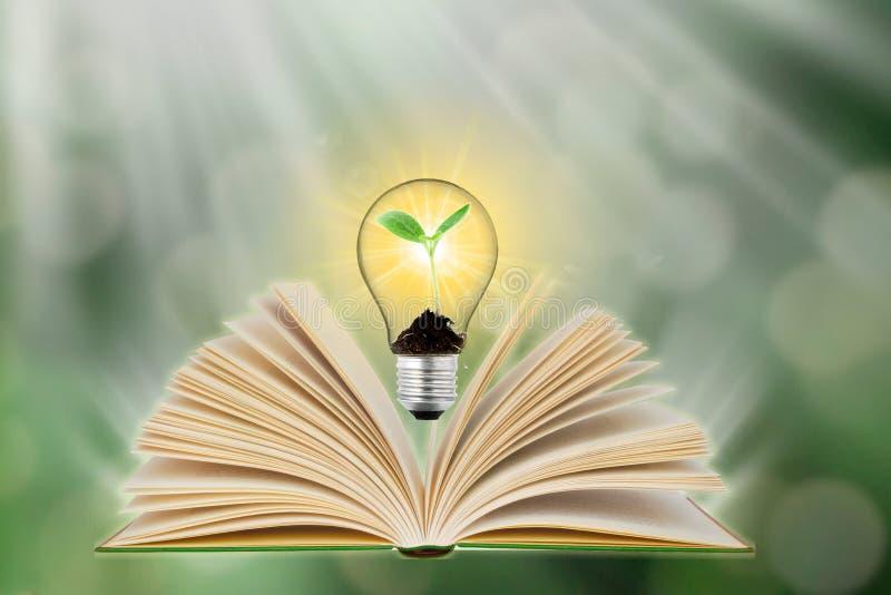 Libro magico aperto con le luci magiche la nascita di conoscenza e di consapevolezza delle idee immagini stock libere da diritti