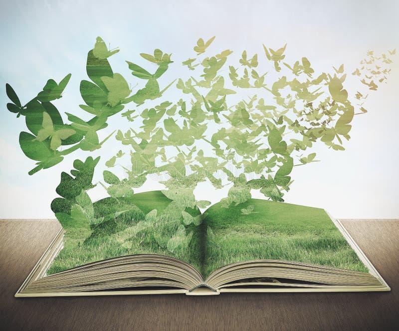 Libro magico, erba, farfalle illustrazione di stock