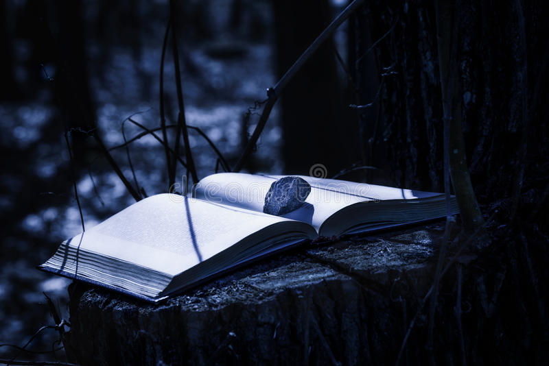 Libro misterioso alla notte fotografia stock