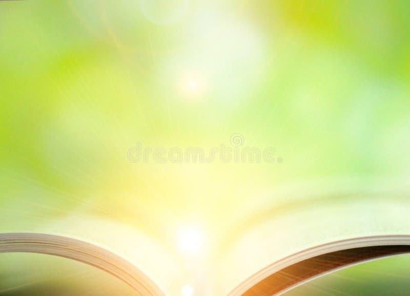 Libro su fondo verde fotografia stock libera da diritti