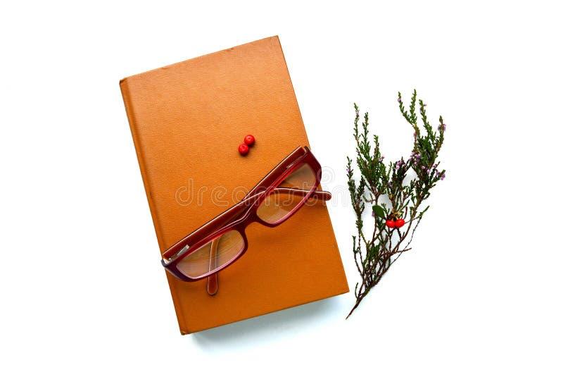 Libro, vetri e ramo con le bacche rosse immagini stock libere da diritti