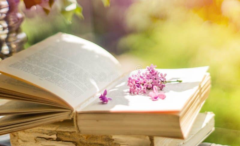 Libro, vidrios, taza de t? y lila en una ventana de madera T? fragante en el jard?n Concepto rom?ntico imagenes de archivo