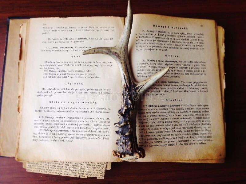 Libro viejo con el cuerno imagen de archivo libre de regalías