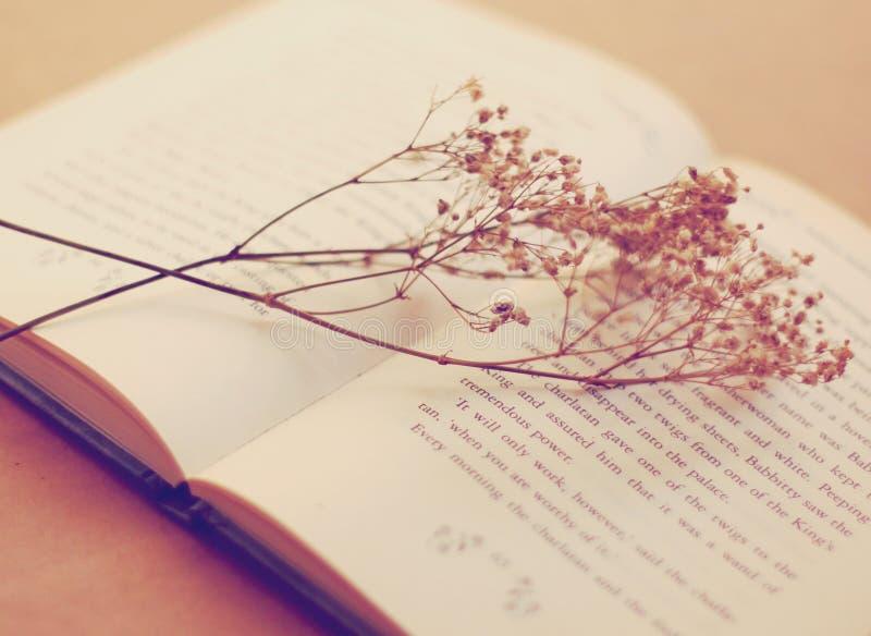 Libro viejo con las flores secadas imagen de archivo libre de regalías