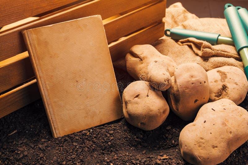 Libro viejo en el producto de la patata org?nica, falsa para arriba fotografía de archivo