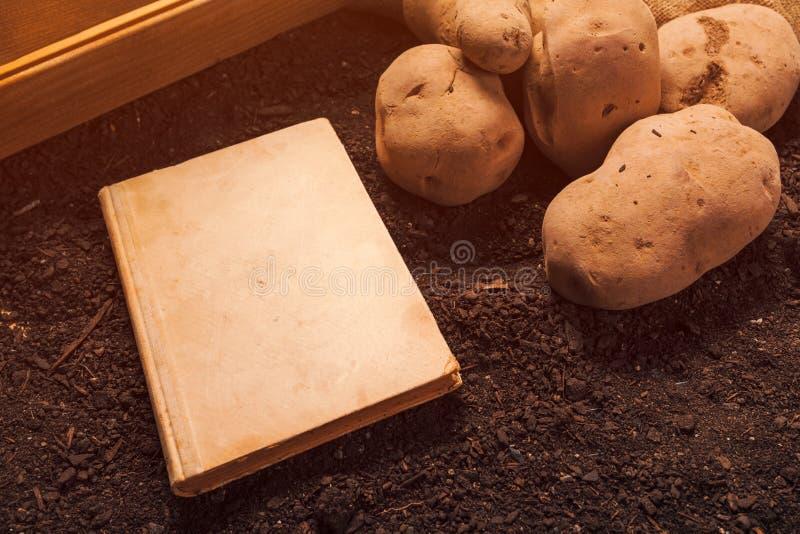 Libro viejo en el producto de la patata org?nica, falsa para arriba imágenes de archivo libres de regalías