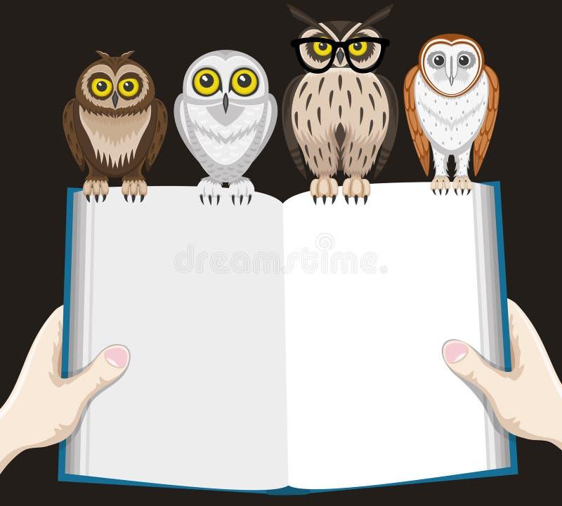 Libro y buhos ilustración del vector