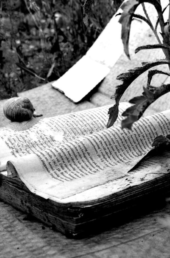 Libro y caracol imagen de archivo