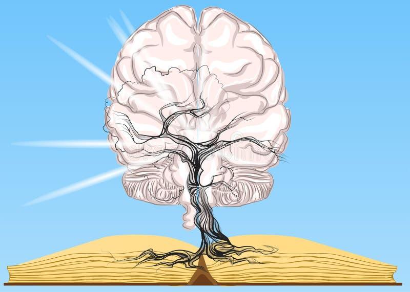 Libro y cerebro libre illustration