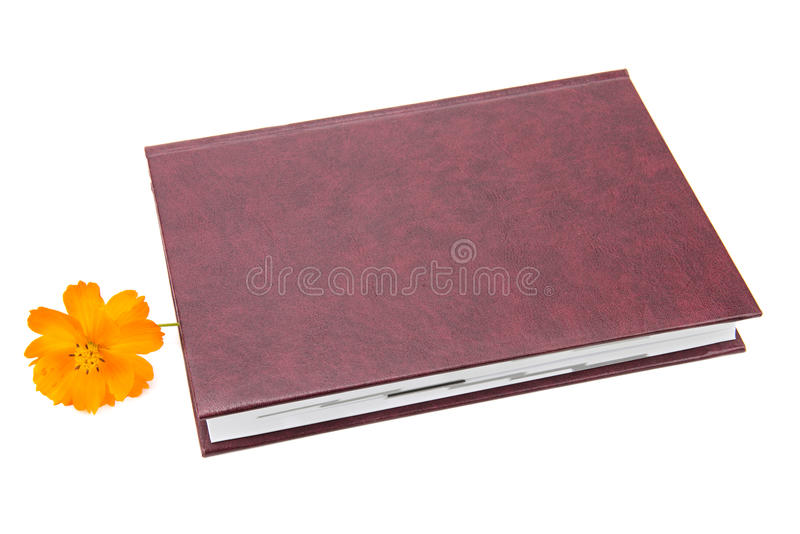Libro y flor imagen de archivo libre de regalías