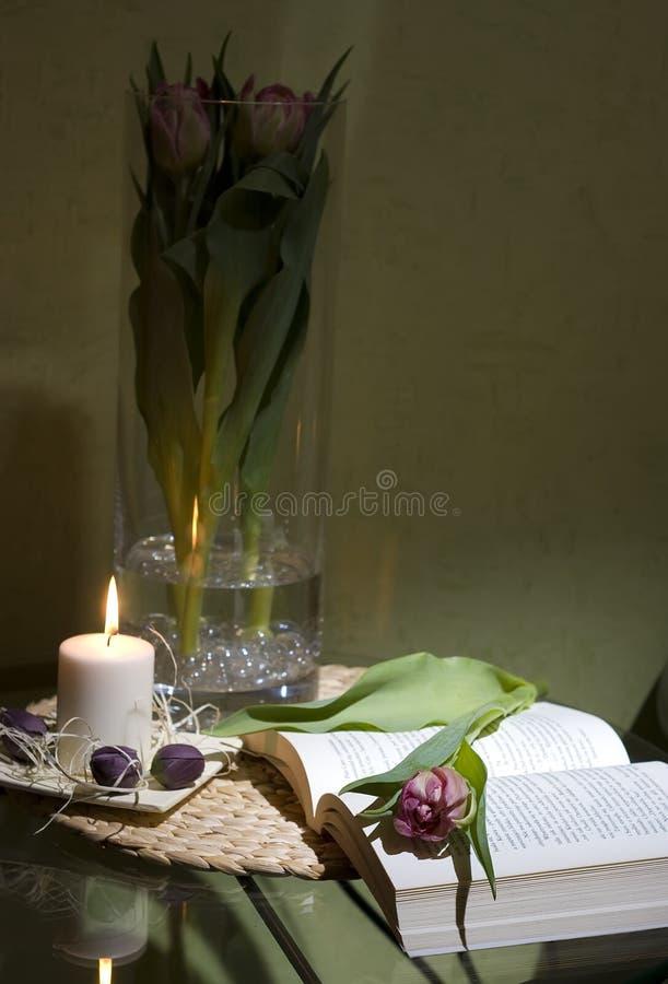 Libro y tulipán fotografía de archivo