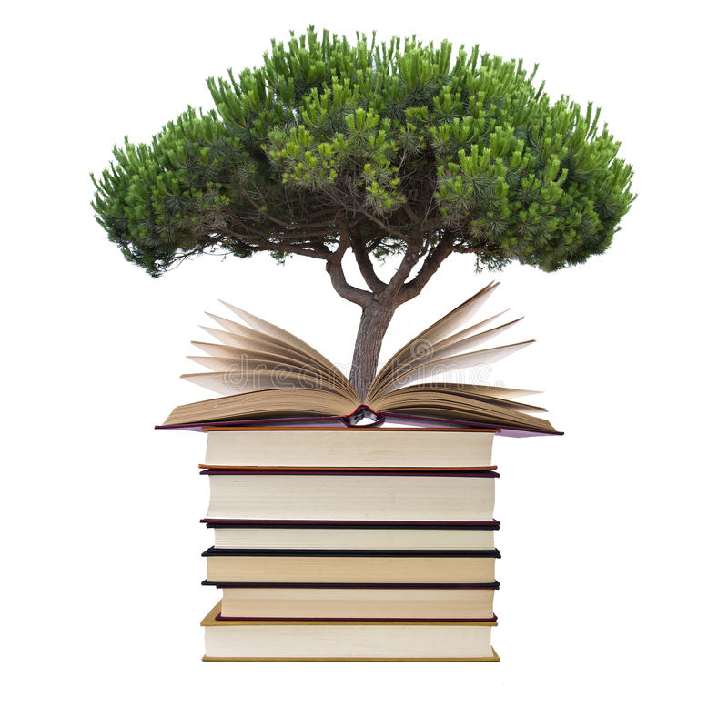 Libros con el árbol fotos de archivo